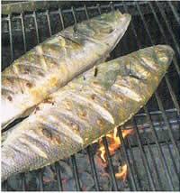 Masala Fisch